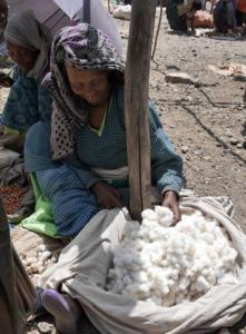 cotton_ethiopia_klesper